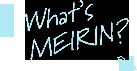 What's MEIRIN?